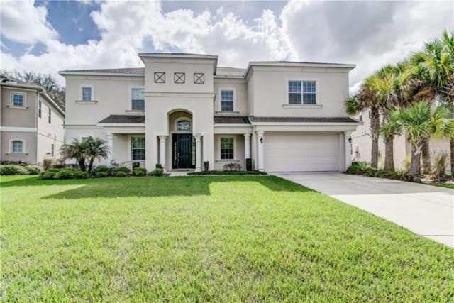 17333 Chelsea Downs Circle, Lithia, FL 33547 (MLS #T2929630) :: Team Turk Real Estate