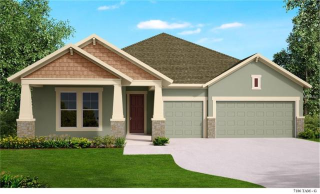 15428 Aviles Parkway, Odessa, FL 33556 (MLS #T2929639) :: Griffin Group