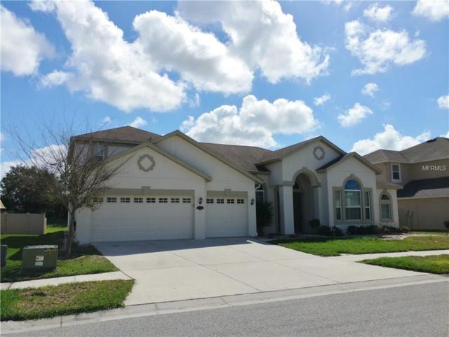 20260 Ravens End Drive, Tampa, FL 33647 (MLS #T2929689) :: Delgado Home Team at Keller Williams