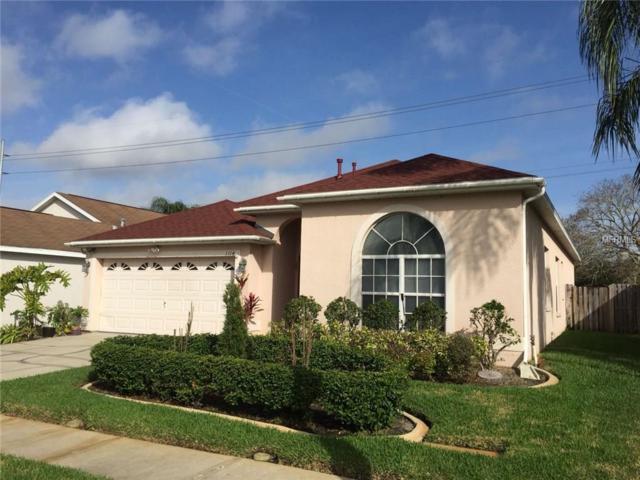 1114 Vinetree Drive, Brandon, FL 33510 (MLS #T2929771) :: Delgado Home Team at Keller Williams