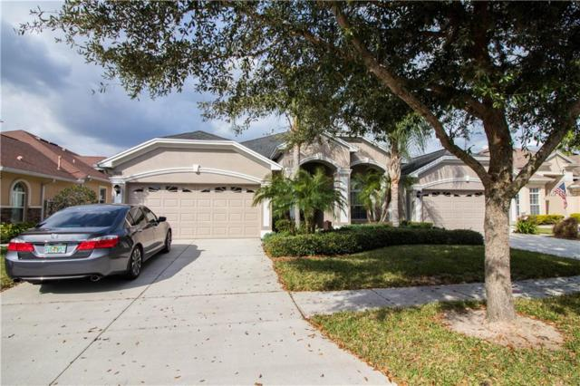 20701 Amanda Oak Court, Land O Lakes, FL 34638 (MLS #T2929791) :: Griffin Group