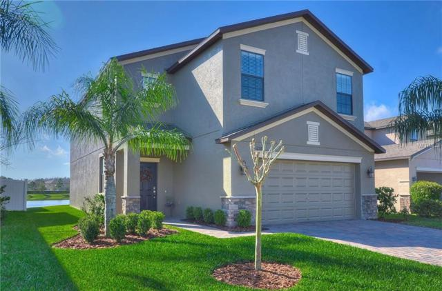 12588 Longstone Court, Trinity, FL 34655 (MLS #T2929805) :: Griffin Group
