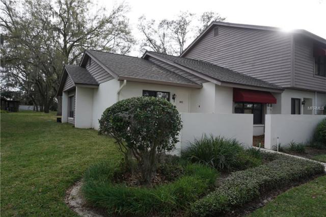 801 Oak Park Place, Brandon, FL 33511 (MLS #T2929811) :: Griffin Group
