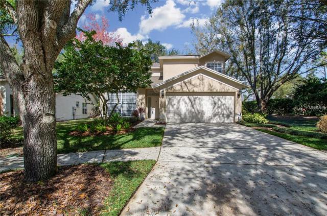 17768 Oak Bridge Street, Tampa, FL 33647 (MLS #T2929884) :: G World Properties