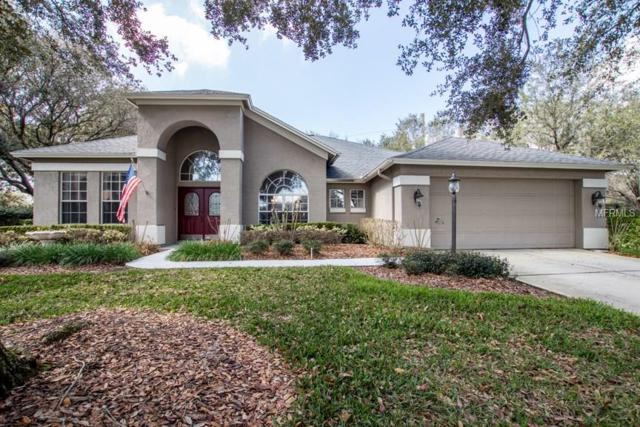 3402 Shadowood Drive, Valrico, FL 33596 (MLS #T2929915) :: Griffin Group