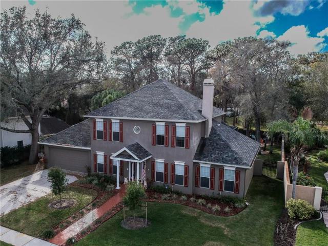 12908 Cinnimon Place, Tampa, FL 33624 (MLS #T2929924) :: Team Bohannon Keller Williams, Tampa Properties