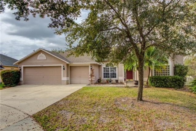 19108 Cormorant Cove Place, Tampa, FL 33647 (MLS #T2929940) :: Griffin Group