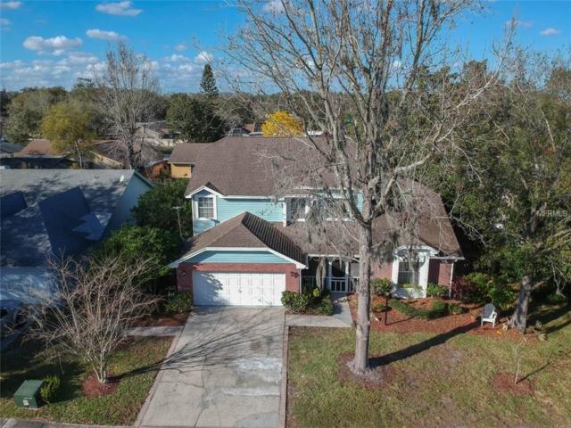 12222 Wildbrook Drive, Riverview, FL 33569 (MLS #T2929946) :: KELLER WILLIAMS CLASSIC VI