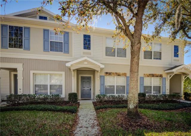 15903 Fishhawk View Drive, Lithia, FL 33547 (MLS #T2929968) :: Team Turk Real Estate