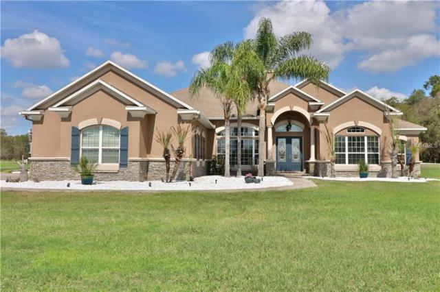 18232 Lithia Ranch Road, Lithia, FL 33547 (MLS #T2930008) :: Team Turk Real Estate