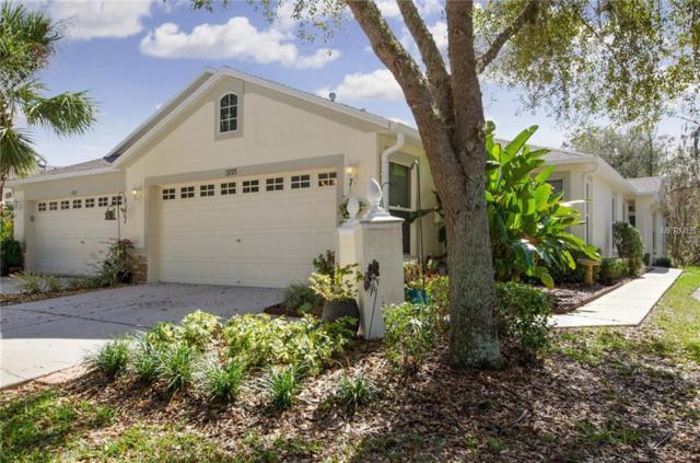 15725 Phoebepark Avenue, Lithia, FL 33547 (MLS #T2930029) :: Team Turk Real Estate
