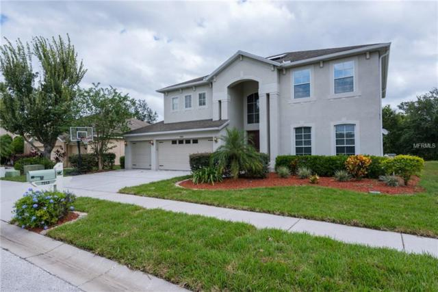 7212 Americus Lane, Land O Lakes, FL 34637 (MLS #T2930034) :: Griffin Group