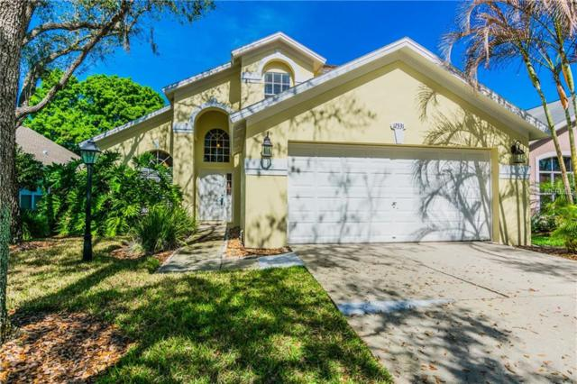 12331 Glenfield Avenue, Tampa, FL 33626 (MLS #T2930036) :: Griffin Group