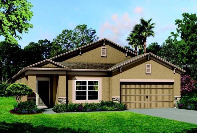 10749 Pleasant Knoll Drive, Tampa, FL 33647 (MLS #T2930052) :: KELLER WILLIAMS CLASSIC VI
