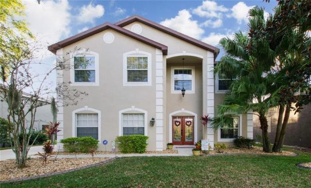14906 Heronglen Drive, Lithia, FL 33547 (MLS #T2930063) :: Team Turk Real Estate