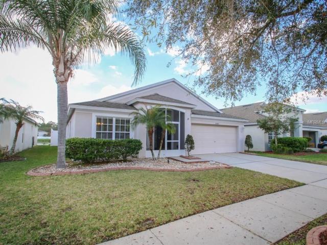 25417 Lexington Oaks Boulevard, Wesley Chapel, FL 33544 (MLS #T2930077) :: Griffin Group