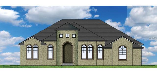 17107 Lakeshore, Lutz, FL 33558 (MLS #T2930110) :: Team Turk Real Estate