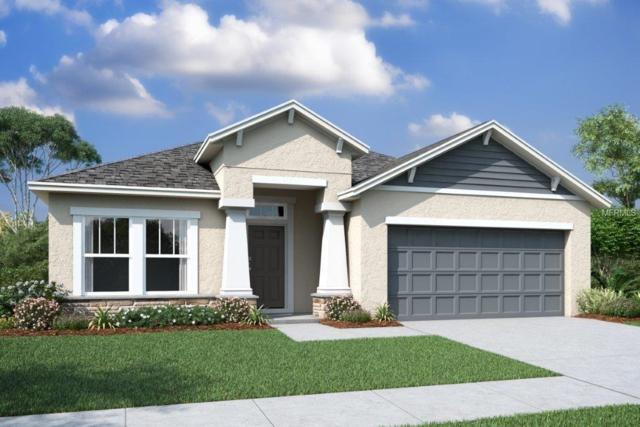 4507 Lindever Lane, Palmetto, FL 34221 (MLS #T2930196) :: TeamWorks WorldWide