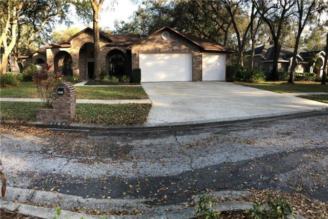 2107 Isle Of Palms Drive, Valrico, FL 33596 (MLS #T2930205) :: Team Turk Real Estate
