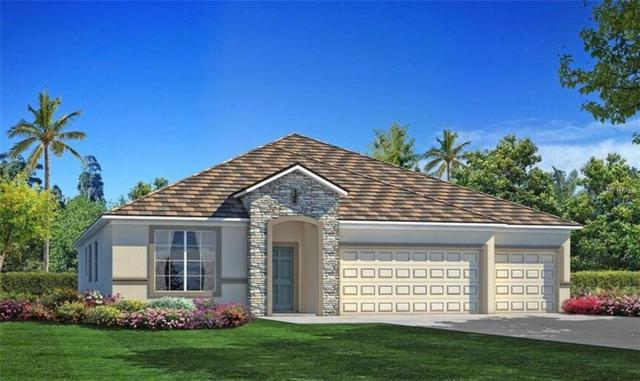 11945 Sand Myrtle Road, Riverview, FL 33579 (MLS #T2930211) :: Team Turk Real Estate