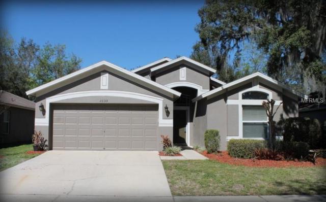 2633 Brookville Drive, Valrico, FL 33596 (MLS #T2930236) :: Team Turk Real Estate