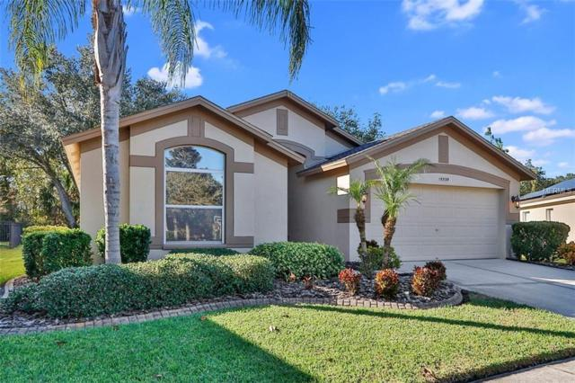 15539 Martinmeadow Drive, Lithia, FL 33547 (MLS #T2930251) :: Team Turk Real Estate