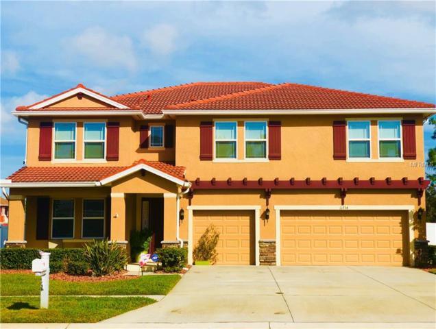 11734 Newberry Grove Loop, Riverview, FL 33579 (MLS #T2930300) :: Team Turk Real Estate