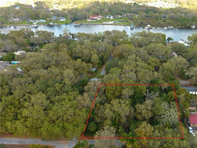 Cleveland, Riverview, FL 33569 (MLS #T2930308) :: Team Turk Real Estate