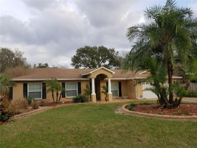 2210 Parkwood Drive, Valrico, FL 33594 (MLS #T2930313) :: Team Turk Real Estate