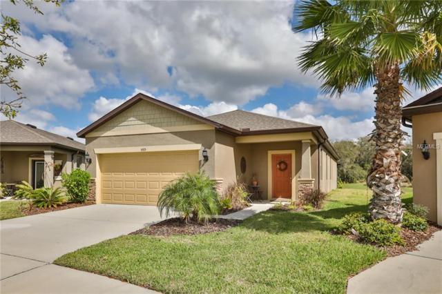 5915 Sweet Birch Drive, Riverview, FL 33578 (MLS #T2930328) :: Team Turk Real Estate
