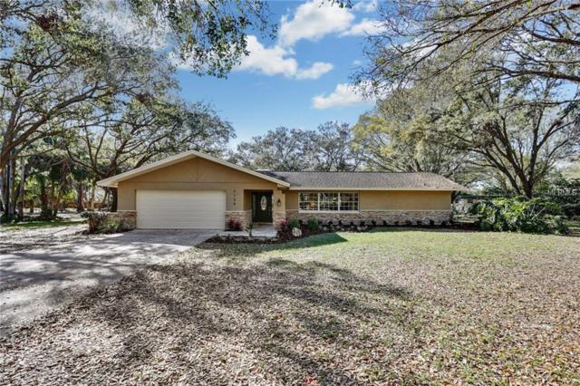 2125 Bow Lane, Safety Harbor, FL 34695 (MLS #T2930353) :: The Fowkes Group
