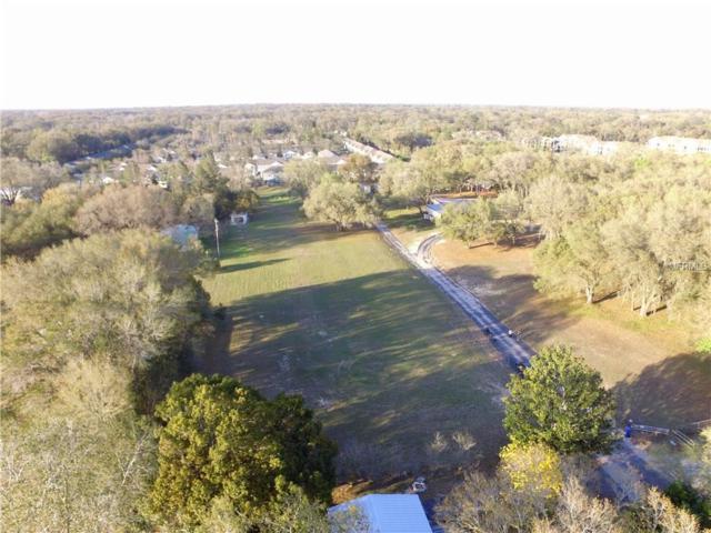 Briar Meadows, Valrico, FL 33594 (MLS #T2930355) :: Team Turk Real Estate