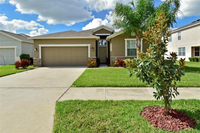 1110 Beech Grove Place, Ruskin, FL 33570 (MLS #T2930375) :: Dalton Wade Real Estate Group