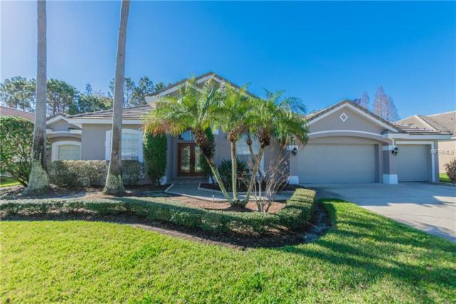 12014 Marblehead Drive, Tampa, FL 33626 (MLS #T2930383) :: The Duncan Duo Team