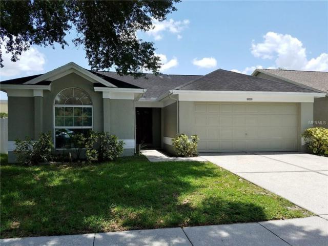 10039 Cedar Dune Drive, Tampa, FL 33624 (MLS #T2930405) :: Team Bohannon Keller Williams, Tampa Properties