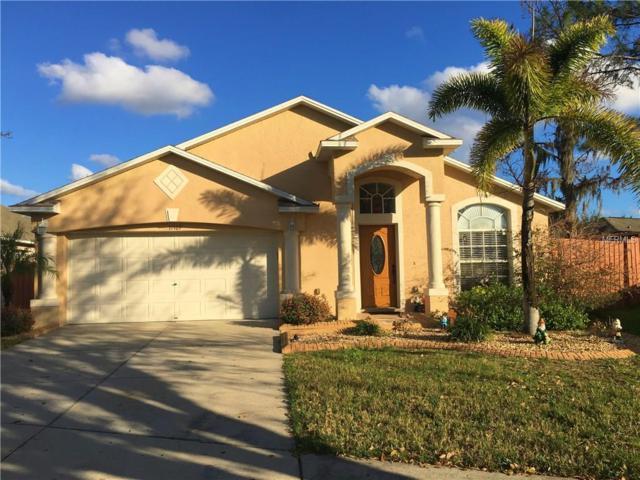 11107 Lakeside Vista Drive, Riverview, FL 33569 (MLS #T2930530) :: Dalton Wade Real Estate Group