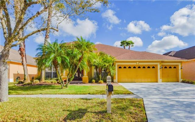 19515 French Lace Drive, Lutz, FL 33558 (MLS #T2930645) :: The Duncan Duo Team