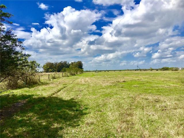 9751 Highway 31, Arcadia, FL 34266 (MLS #T2930739) :: Griffin Group