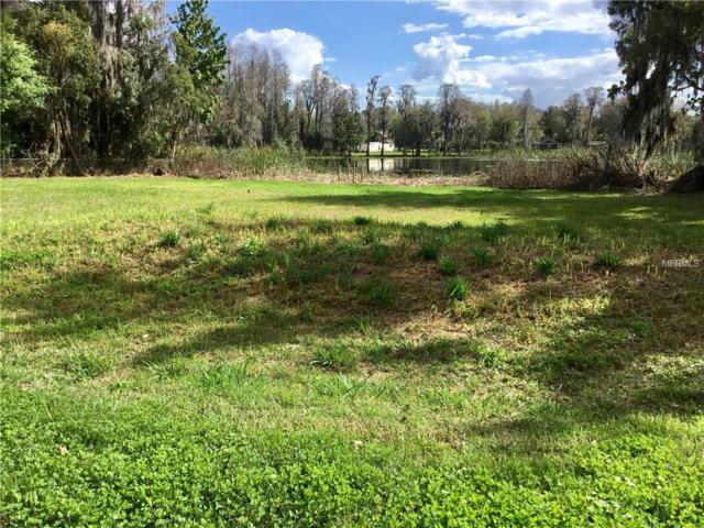 21414 Lake Sharon Drive, Land O Lakes, FL 34638 (MLS #T2930792) :: Team Bohannon Keller Williams, Tampa Properties