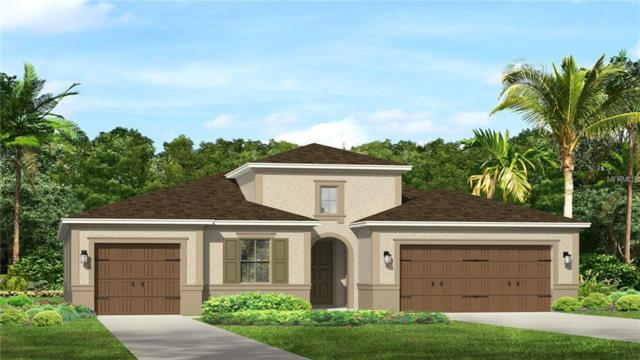 33446 Azalea Ridge Drive, Wesley Chapel, FL 33545 (MLS #T2930867) :: Team Bohannon Keller Williams, Tampa Properties
