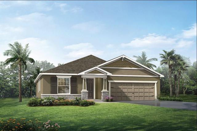 11602 Blue Woods Drive #152, Riverview, FL 33569 (MLS #T2930894) :: Dalton Wade Real Estate Group