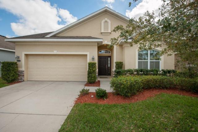 7738 Atwood Drive, Wesley Chapel, FL 33545 (MLS #T2930916) :: Team Bohannon Keller Williams, Tampa Properties
