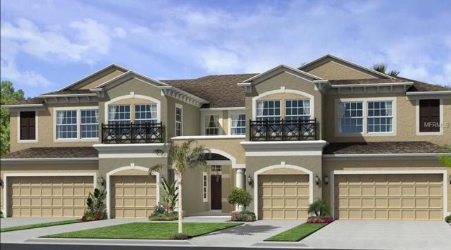 30218 Southwell Lane, Wesley Chapel, FL 33543 (MLS #T2930962) :: Team Bohannon Keller Williams, Tampa Properties