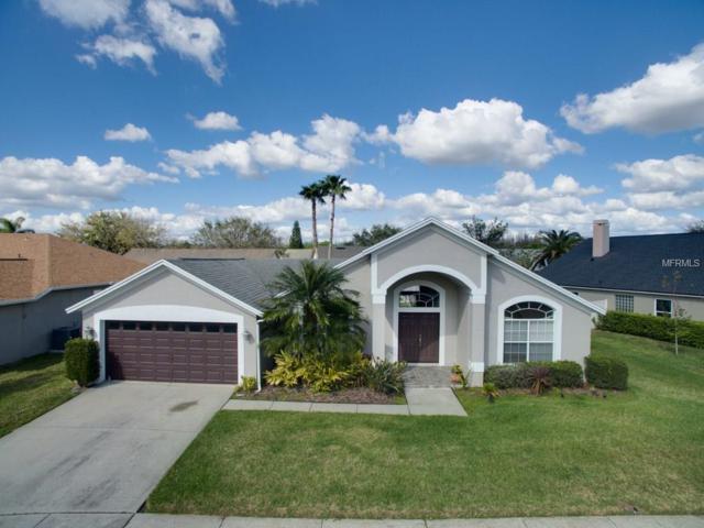 18542 Kingbird Drive, Lutz, FL 33558 (MLS #T2930965) :: The Fowkes Group