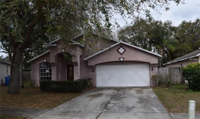 530 Napa Valley Circle, Valrico, FL 33594 (MLS #T2930973) :: The Duncan Duo Team