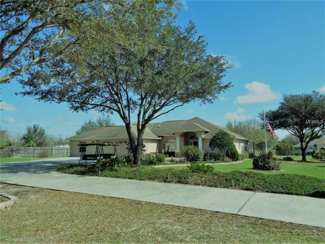 18813 Hanna Road, Lutz, FL 33549 (MLS #T2930993) :: The Fowkes Group