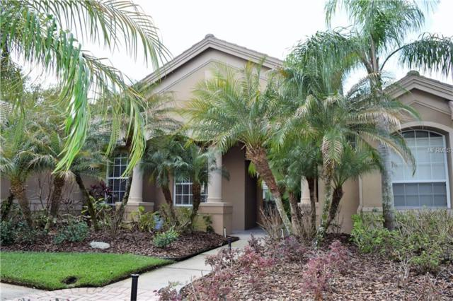 17918 Sheltered Ridge Lane, Tampa, FL 33647 (MLS #T2931038) :: Team Bohannon Keller Williams, Tampa Properties