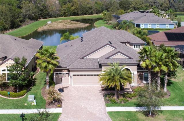 32249 Summerglade Drive, Wesley Chapel, FL 33545 (MLS #T2931073) :: The Fowkes Group