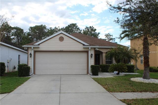20119 Bay Cedar Avenue, Tampa, FL 33647 (MLS #T2931096) :: The Fowkes Group