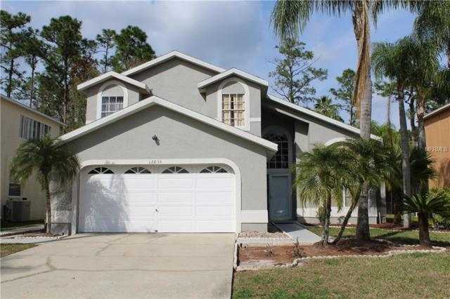 12835 Royal George Avenue, Odessa, FL 33556 (MLS #T2931101) :: The Fowkes Group